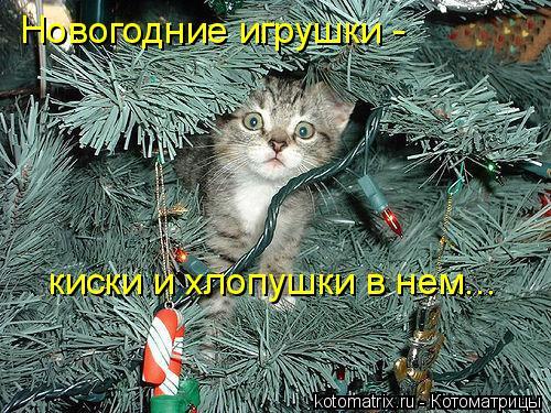 Котоматрица: Новогодние игрушки - киски и хлопушки в нем...