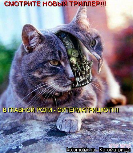 Котоматрица: СМОТРИТЕ НОВЫЙ ТРИЛЛЕР!!! В ГЛАВНОЙ РОЛИ - СУПЕРМАТРИЦКОТ!!!!