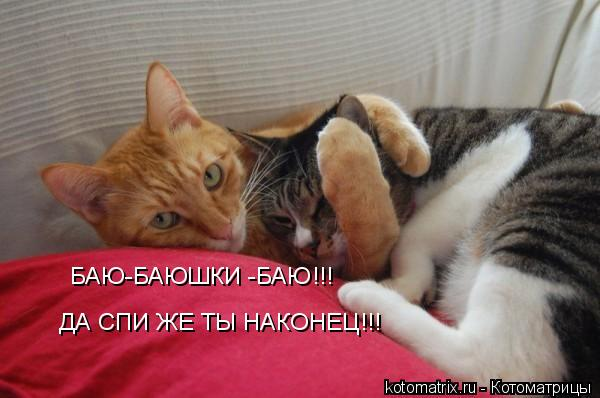 Котоматрица: БАЮ-БАЮШКИ -БАЮ!!! ДА СПИ ЖЕ ТЫ НАКОНЕЦ!!!