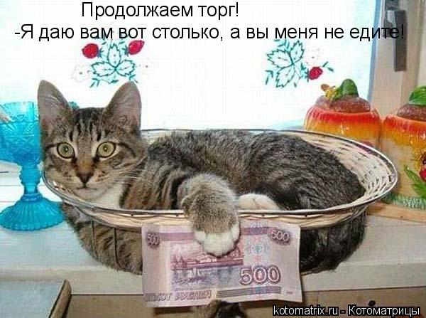 Котоматрица: Продолжаем торг! -Я даю вам вот столько, а вы меня не едите!