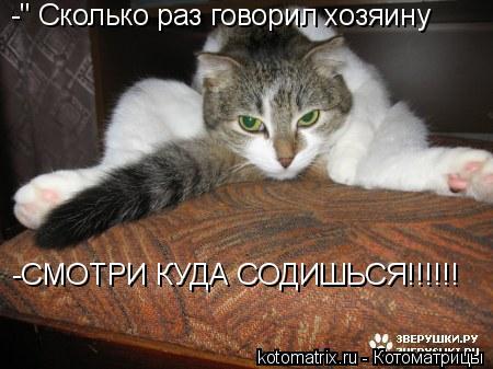 """Котоматрица: -"""" Сколько раз говорил хозяину -СМОТРИ КУДА СОДИШЬСЯ!!!!!!"""
