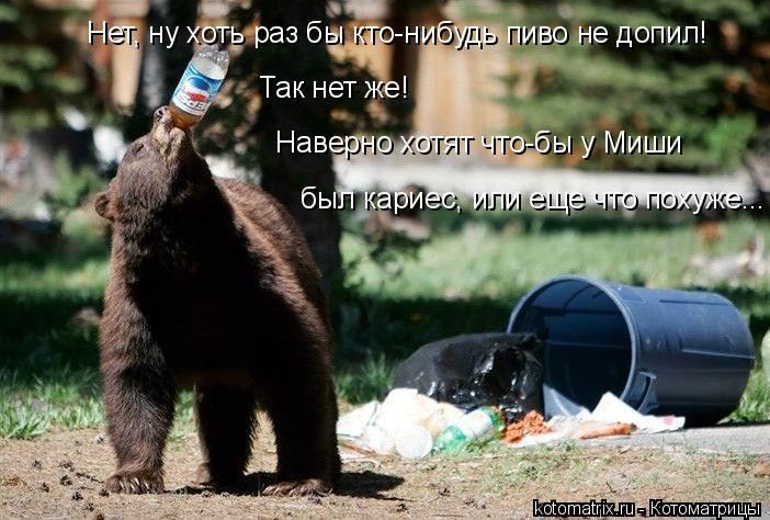 Котоматрица: Нет, ну хоть раз бы кто-нибудь пиво не допил!  Так нет же!   Наверно хотят что-бы у Миши  был кариес, или еще что похуже...