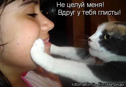 Котоматрица: Не целуй меня! Вдруг у тебя глисты!