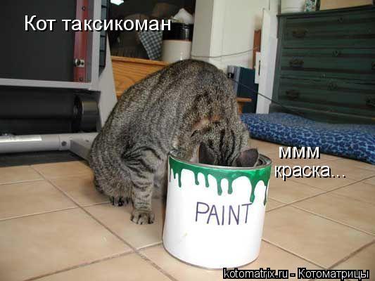 Котоматрица: Кот таксикоман ммм краска...