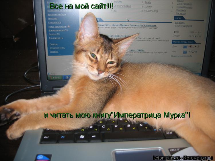 """Котоматрица: Все на мой сайт!!! и читать мою книгу""""Императрица Мурка""""!"""