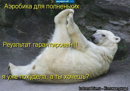 Котоматрица: Аэробика для полненьких.  Реузльтат гарантирован!!! я уже похудела, а ты хочешь?