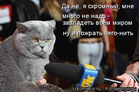 Котоматрица: Да не, я скромный, мне много не надо -  ну и пожрать чего-нить завладеть всем миром