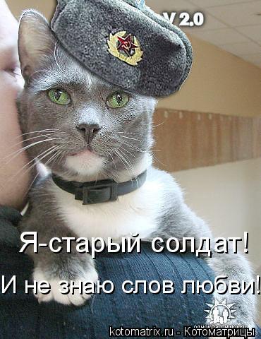 Котоматрица: Я-старый солдат! И не знаю слов любви!