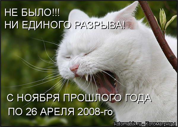 Котоматрица: НЕ БЫЛО!!! НИ ЕДИНОГО РАЗРЫВА! С НОЯБРЯ ПРОШЛОГО ГОДА ПО 26 АРЕЛЯ 2008-го