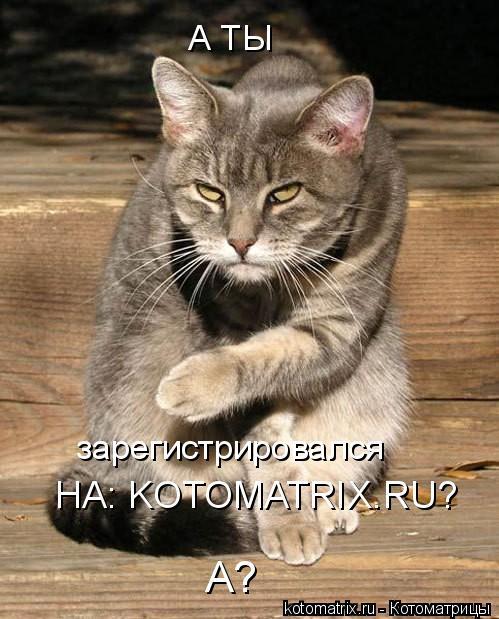 Котоматрица: А ТЫ зарегистрировался НА: KOTOMATRIX.RU? А?