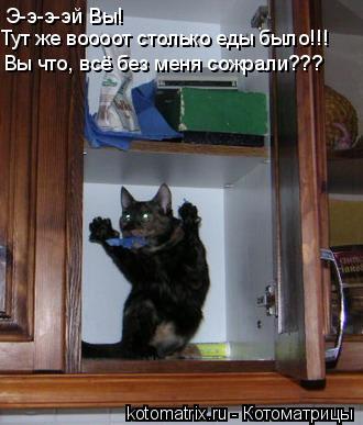 Котоматрица: Э-э-э-эй Вы! Тут же воооот столько еды было!!! Вы что, всё без меня сожрали???