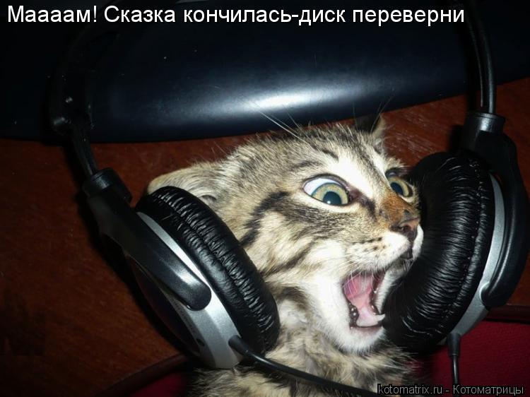 Котоматрица: Маааам! Сказка кончилась-диск переверни
