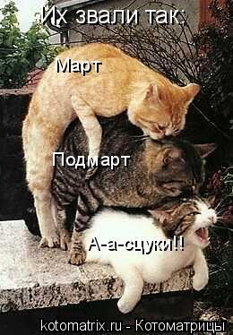 Котоматрица: Их звали так: Март Подмарт А-а-сцуки!!