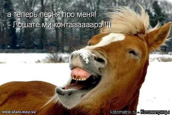 Котоматрица: а теперь песня про меня! - Лошате ми контаааааарэ!!!!