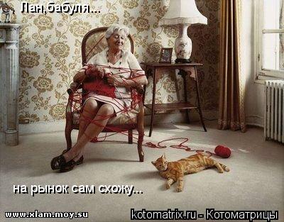 Котоматрица: на рынок сам схожу... Лан,бабуля...