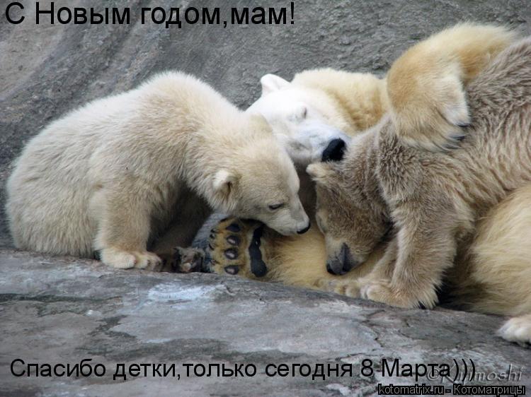 Котоматрица: С Новым годом,мам! Спасибо детки,только сегодня 8 Марта)))