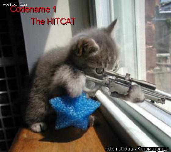 Котоматрица: Codename 1 The HITCAT