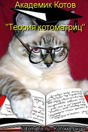 "Котоматрица: Академик Котов ""Теория котоматриц"""