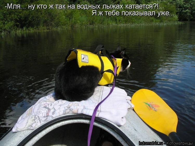 Котоматрица: -Мля... ну кто ж так на водных лыжах катается?! Я ж тебе показывал уже...
