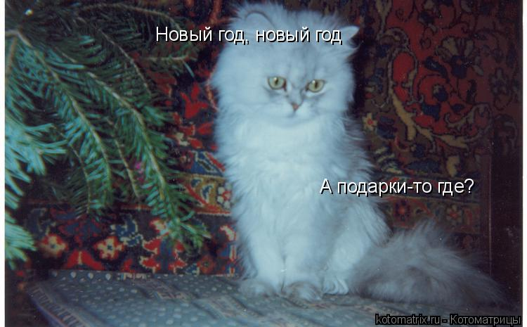 Котоматрица: Новый год, новый год А подарки-то где?
