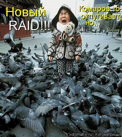 Котоматрица: Новый  RAID!!! Комаров то  отпугивает, но...