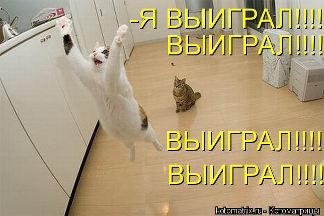 Котоматрица: ВЫИГРАЛ!!!! ВЫИГРАЛ!!!! ВЫИГРАЛ!!!! -Я ВЫИГРАЛ!!!!