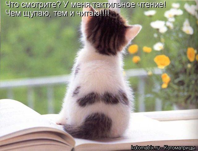 Котоматрица: Что смотрите? У меня тактильное чтение! Чем щупаю, тем и читаю!!!!