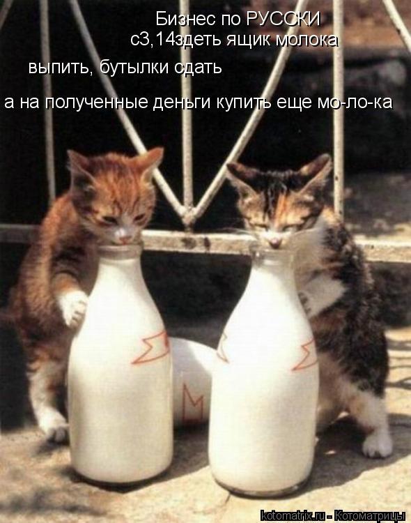 Котоматрица: Бизнес по РУССКИ с3,14здеть ящик молока а на полученные деньги купить еще мо-ло-ка выпить, бутылки сдать