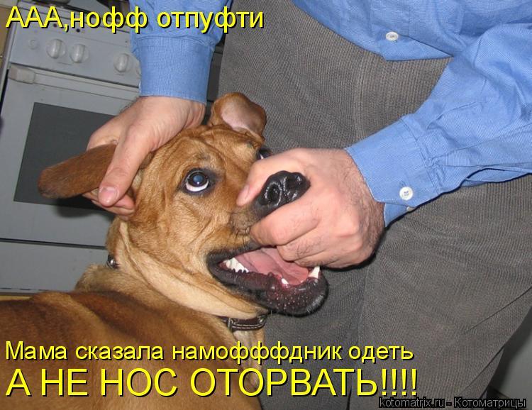 Котоматрица: ААА,нофф отпуфти Мама сказала намофффдник одеть А НЕ НОС ОТОРВАТЬ!!!!