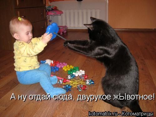 Котоматрица: А ну отдай сюда, двурукое жЫвотное!