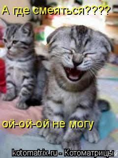 Котоматрица: ой-ой-ой не могу А где смеяться????