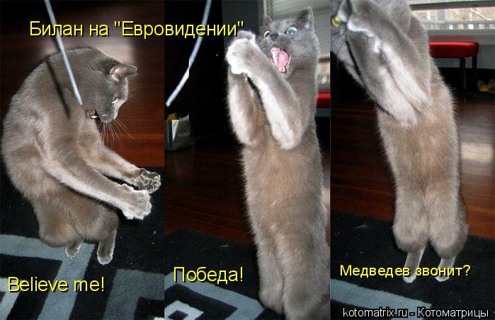 "Котоматрица: Билан на ""Евровидении"" Believe me!  Победа! Медведев звонит?"