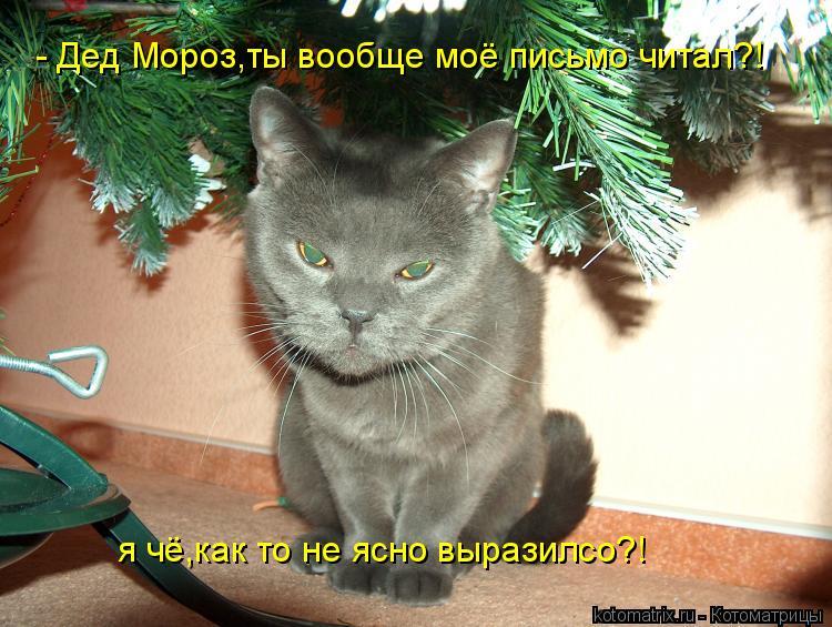 Котоматрица: - Дед Мороз,ты вообще моё письмо читал?! я чё,как то не ясно выразилсо?!