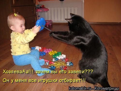 Котоматрица: ХозяеваАа!!! зачем вы его завели??? Он у меня все игрушки отбирает!!!
