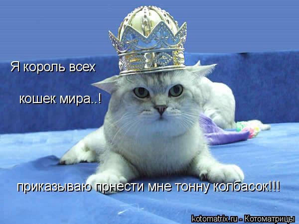 Котоматрица: приказываю прнести мне тонну колбасок!!! Я король всех кошек мира..!