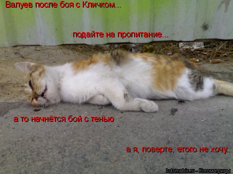 Котоматрица: Валуев после боя с Кличком... подайте на пропитание... а то начнётся бой с тенью а я, поверте, етого не хочу...