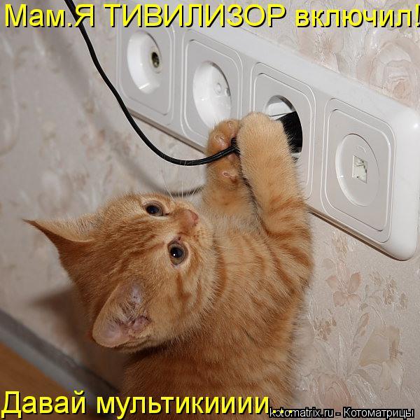 Котоматрица: Мам.Я ТИВИЛИЗОР включил! Давай мультикииии...