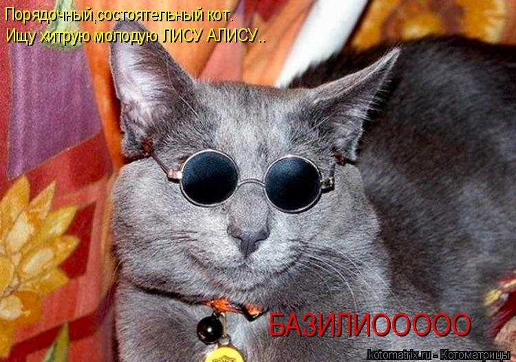 Котоматрица: Порядочный,состоятельный кот. Ищу хитрую молодую ЛИСУ АЛИСУ.. БАЗИЛИООООО