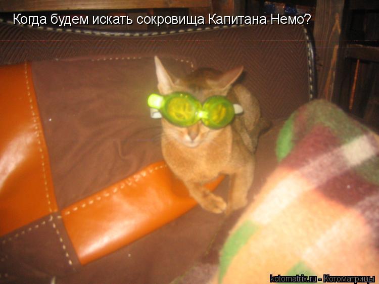 Котоматрица: Когда будем искать сокровища Капитана Немо?