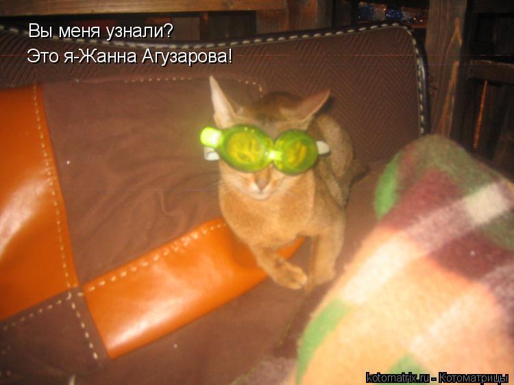 Котоматрица: Вы меня узнали? Это я-Жанна Агузарова!
