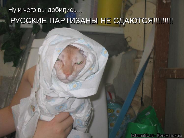 Котоматрица: Ну и чего вы добились... РУССКИЕ ПАРТИЗАНЫ НЕ СДАЮТСЯ!!!!!!!!!