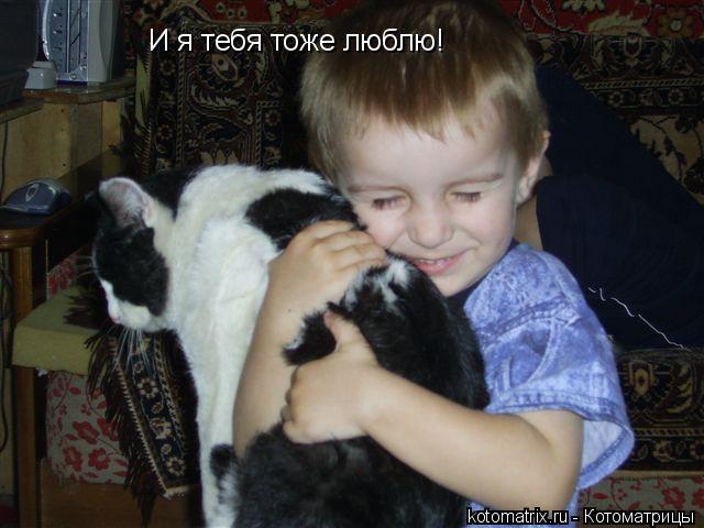 Котоматрица: И я тебя тоже люблю!