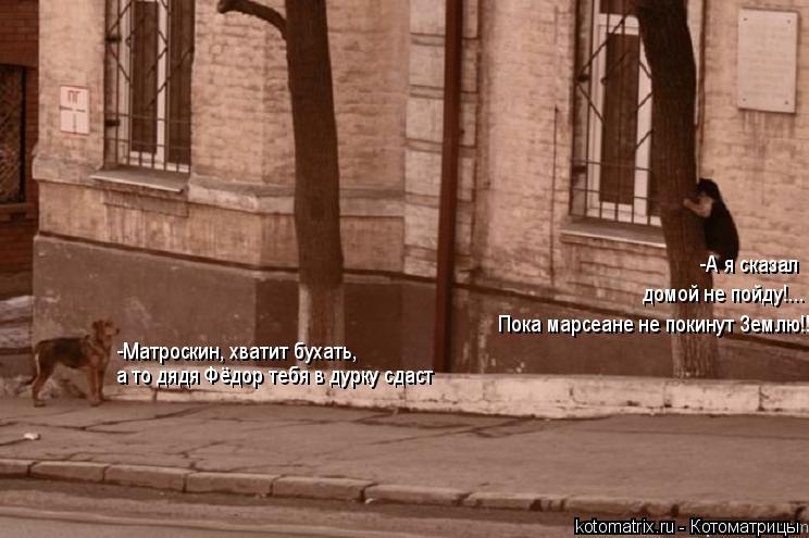 Котоматрица: -А я сказал  домой не пойду!... -Матроскин, хватит бухать, а то дядя Фёдор тебя в дурку сдаст Пока марсеане не покинут Землю!!!!