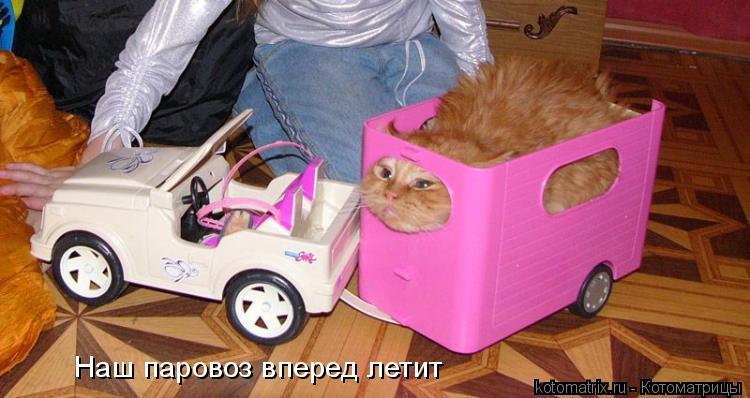 Котоматрица: Наш паровоз вперед летит