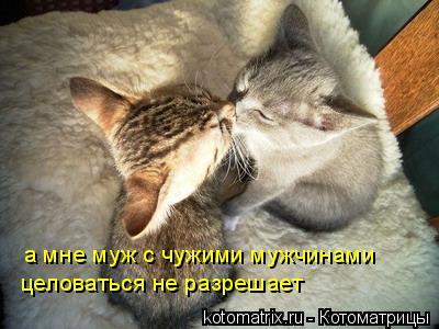 Котоматрица: а мне муж с чужими мужчинами  целоваться не разрешает
