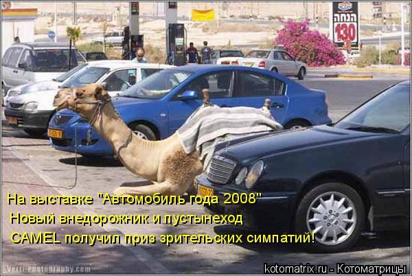 """Котоматрица: На выставке """"Автомобиль года 2008"""" Новый внедорожник и пустынеход CAMEL получил приз зрительских симпатий!"""