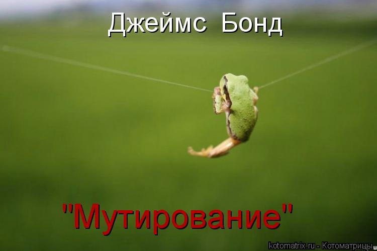 "Котоматрица: Джеймс  Бонд ""Мутирование"""