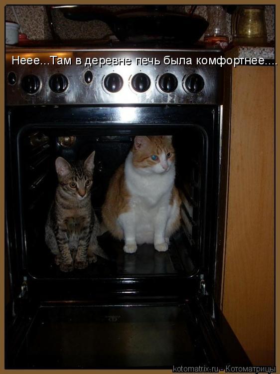 Котоматрица: Неее...Там в деревне печь была комфортнее....