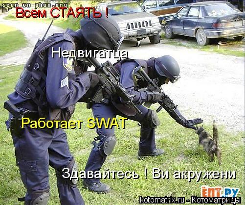 Котоматрица: Всем СТАЯТЬ ! Недвигатца Работает SWAT Здавайтесь ! Ви акружени