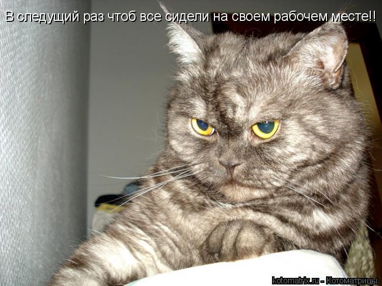 Котоматрица: В следущий раз чтоб все сидели на своем рабочем месте!!